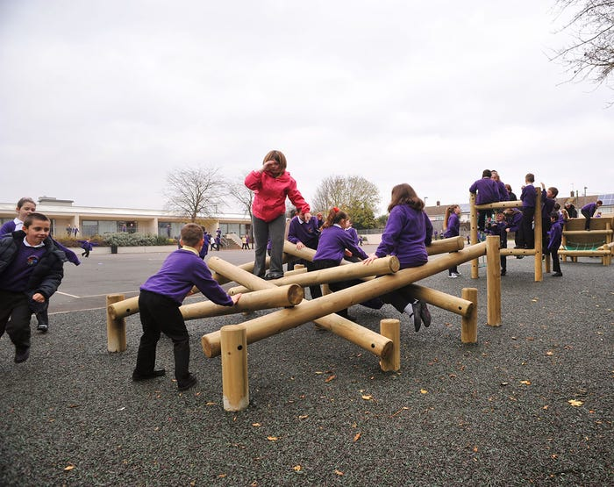 Lumberjack Ladder