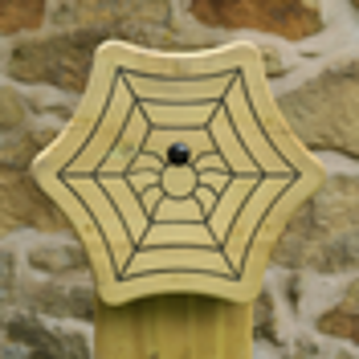 Spider Animal Face Totem